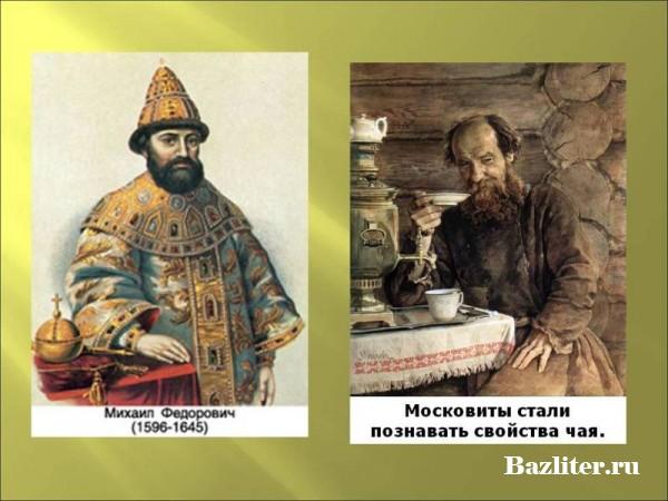 Что такое чай. История происхождения и технология сбора