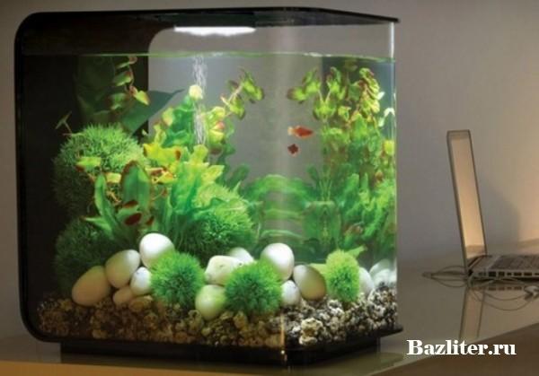 Установка подготовленного оборудования и декораций в аквариум