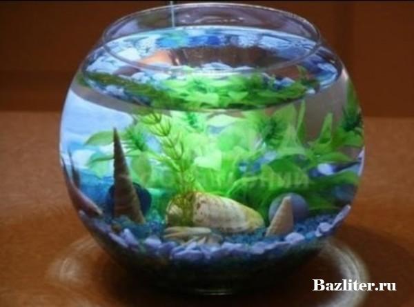 Ежедневный уход за аквариумом