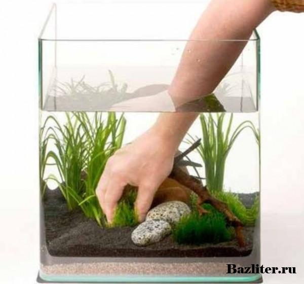 Обработка аквариумных растений