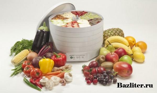 Как выбрать сушилку для фруктов и овощей. Особенности, функционал, виды и критерии выбора