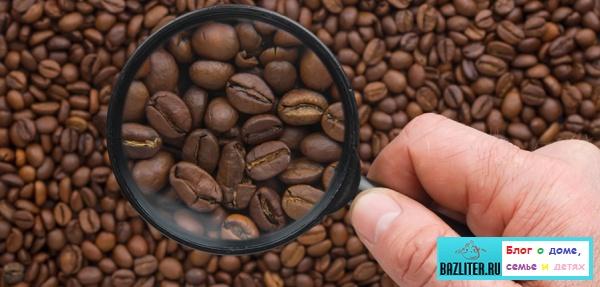 Какой кофе в зернах самый лучший. Особенности, виды, рейтинг и список сортов