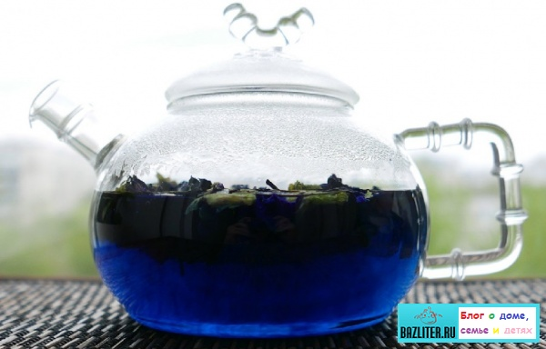 Синий (Тайский) чай: особенности, свойства, рецепты заваривания, сорта, правила выбора, польза и вред