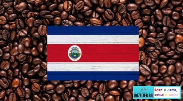 Лучшие мировые производители (экспортеры) кофе. Кофейный пояс, страны, рейтинг и особенности
