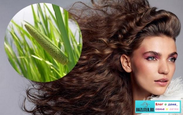 Перхоть в волосах: особенности проблемы, причины появления, как бороться и избавится
