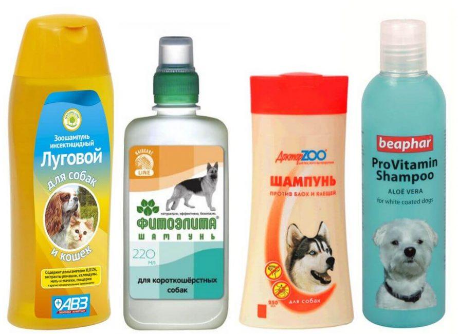 шампуни для мытья собак