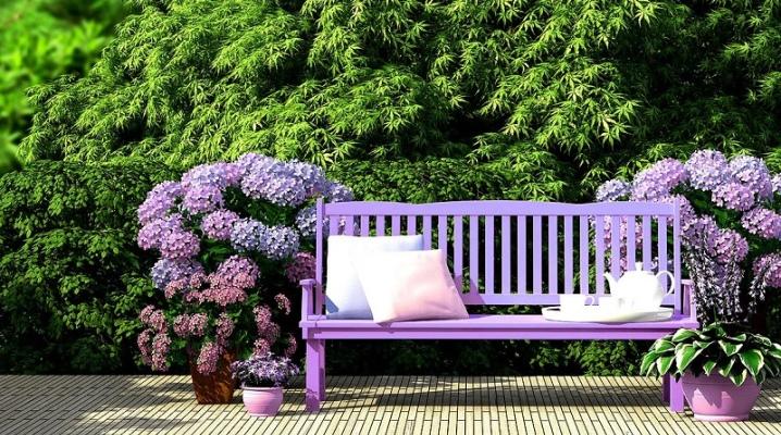 садовые скамейки в интерьере