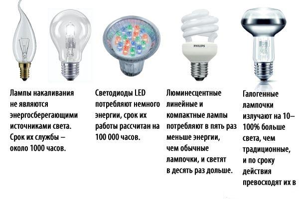 Виды лампочек для дома