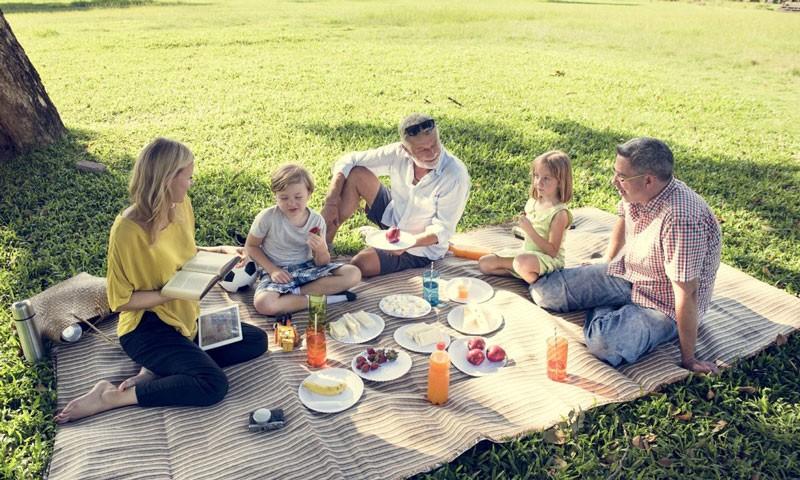 Пикник на природе: меры безопасности
